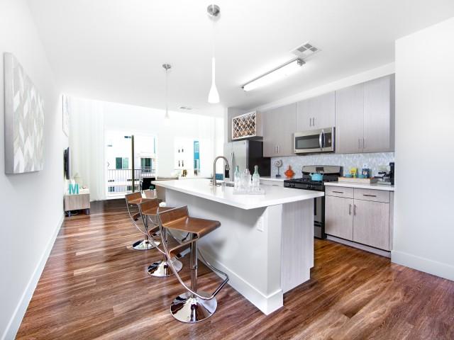 South Beach Apartments rental