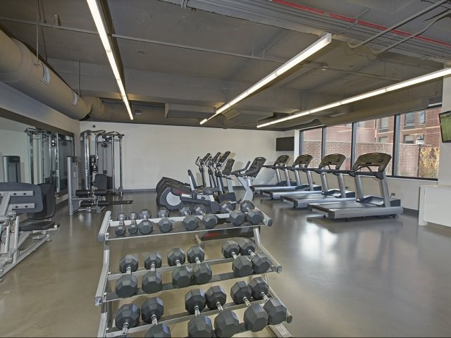Brand New Fitness Center with Cardio & Weight Equipment