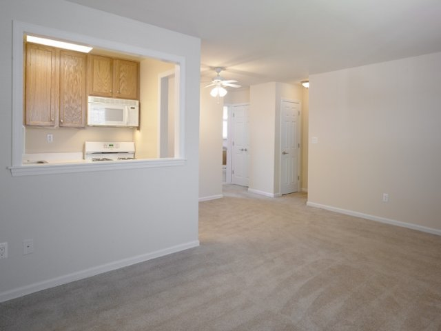 Arla Apartments for rent