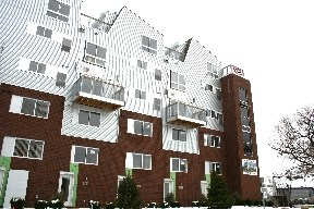 Amber Crossing Townhomes and Lofts Image 1