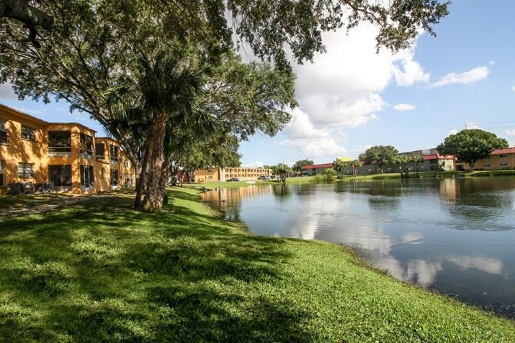 Apartments At Windtree Apartments Port Richey
