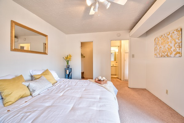 Desert Creek Apartments Albuquerque See Pics Amp Avail