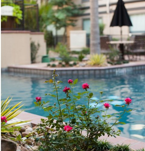 Apartments At Montecito - Houston