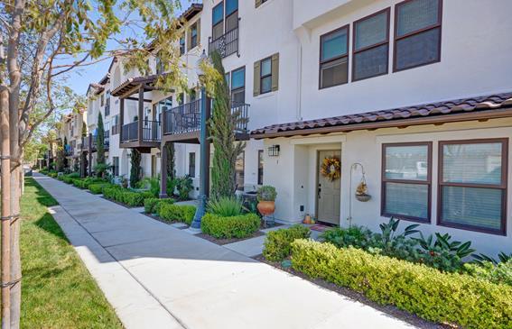 Tavera Apartments for rent