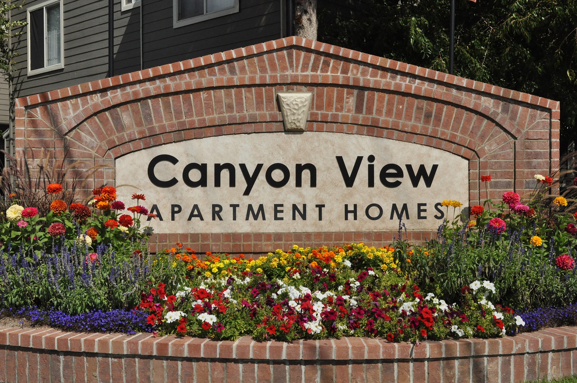 Canyon View for rent