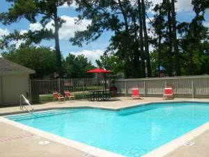Pineview Terrace for rent