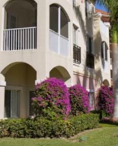 Terracina Grand for rent