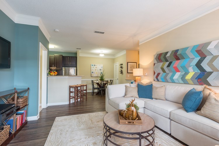 Hannover Grand at Sandy Springs Apartment Homes Image 1