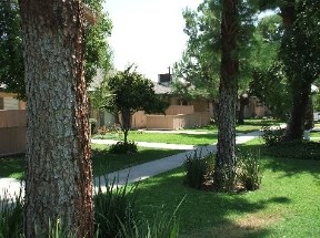 Pine Garden Apartment Homes Image 2