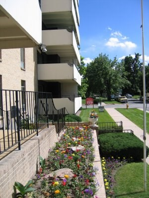 Find Apartments for Rent at Corsican Apartments