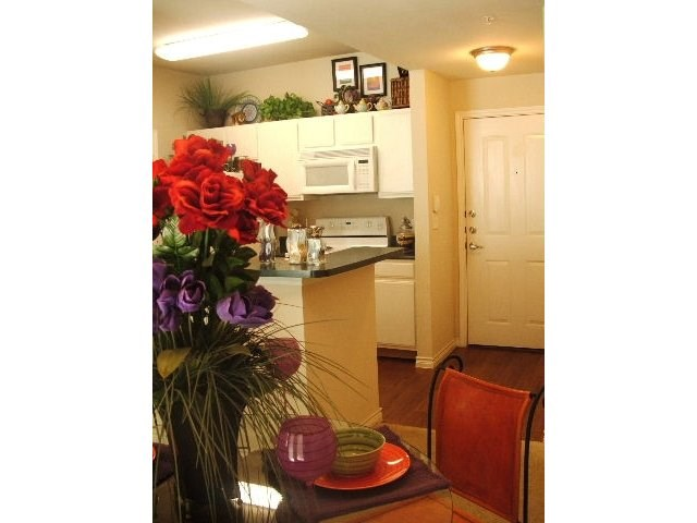 Refugio Place Apartments Reviews